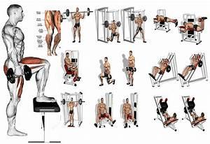 5 Leg Workouts