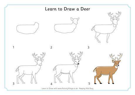 learn  draw  deer   draw   easy animal