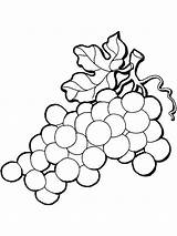 Coloring Grapes Pages Grape Vine Leaves California Mission Fruits Drawing Printable Raisins Colouring Getcolorings Recommended Clipartmag sketch template
