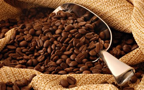 Coffee Consumption and Health: The Final Word   Part 1   Eric Cressey   High Performance