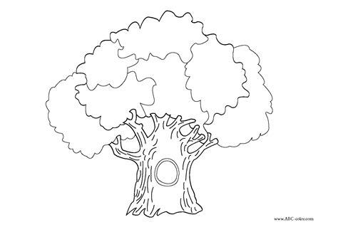 dessin de coloriage arbre  imprimer cp