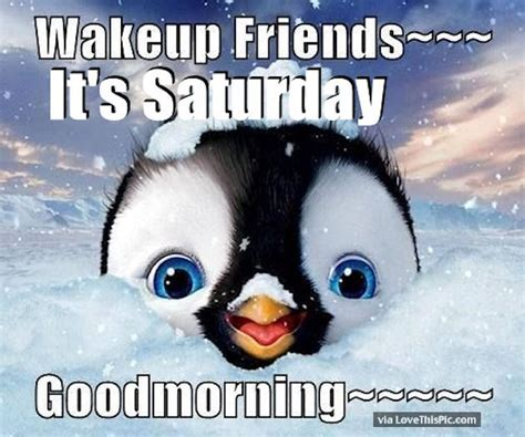 It S Saturday Images Wakeup Friends Its Saturday Morning Pictures Photos