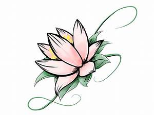 How To Draw Lotus Flower Lotus Flower Drawing - Drawing ...