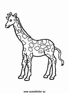 Wandschablonen Zum Ausdrucken Kostenlos : ausmalbilder giraffe gratis 1039 malvorlage giraffe ausmalbilder kostenlos ausmalbilder giraffe ~ Watch28wear.com Haus und Dekorationen