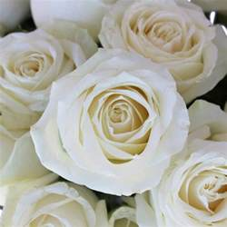 wedding flowers september avalanche white