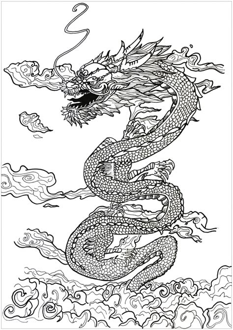 dragon coloring pages  adults  print