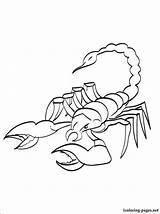 Scorpion Coloring Pages Printable Colouring Animals Scorpio Clip Kombat Mortal Preschool Worksheets Fun Interesting Funny 1coloring sketch template
