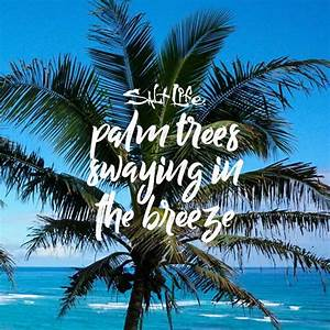Palm Trees | Be... Inspiring Palm Tree Quotes
