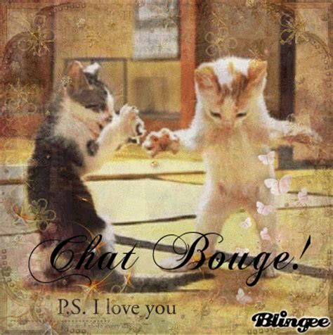 chat bouge image 124490674 blingee