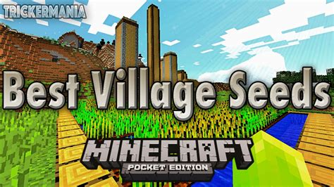 Best Village Seeds Of All Time