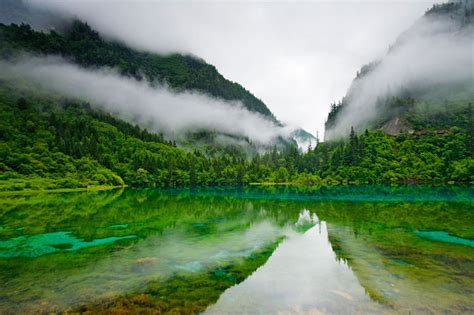 Best hd wallpapers of nature, desktop backgrounds for pc & mac, laptop, tablet, mobile phone. Jiuzhaigou Nature Reserve, China, Lake, Clear Water, Trees ...