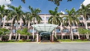 Sylvester Comprehensive Cancer Center 8100 SW 10th St ...