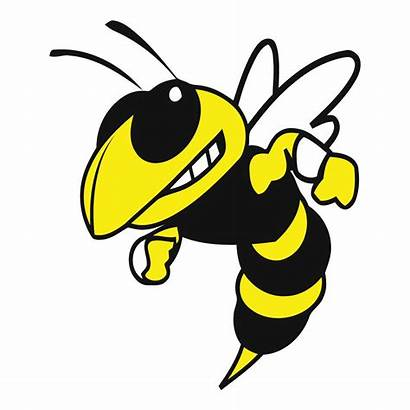 Yellow Jacket Bee Wasp Clipart Decal Jackets
