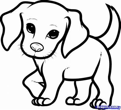 Drawing Dog Coloring Puppy Easy Colouring Puppies