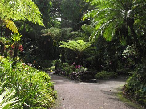 hawaii tropical botanical garden national tropical botanical gardens cheyenne garden gossip
