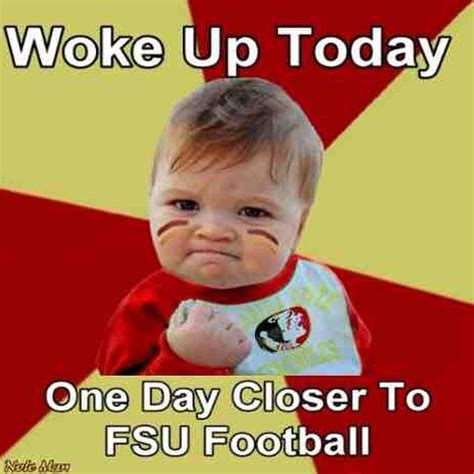 Fsu Memes - 370 best go noles images on pinterest florida state seminoles florida state football and