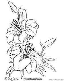 hawaiian flower Colouring Pages (page 2) | Exotic Flowers