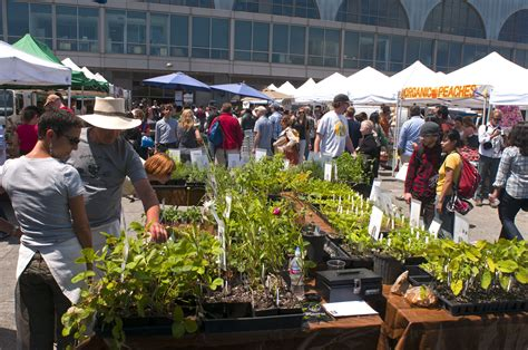 crucial tips  shopping  farmers markets