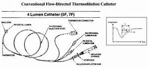 Schematic Diagram Of A Typical Flow