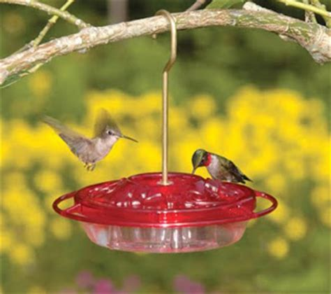 wild birds unlimited what is the best hummingbird feeder