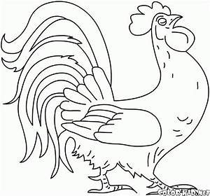 Coloring page - Domestic animals