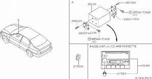 Infiniti G20 Radio Wiring Harness  Audio  Antenna  Fitting