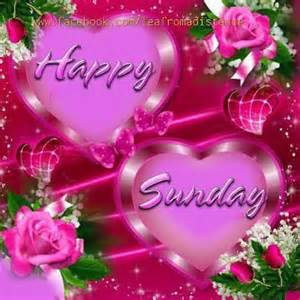 happy sunday pictures photos and images for and