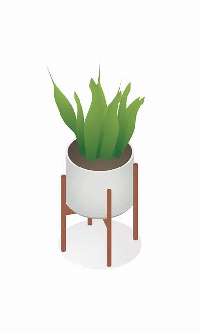 Plant Isometric Plants Indoor Interior Toffu Architecture