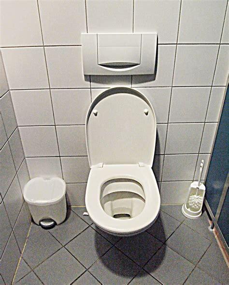 in this toilet toilet wikipedia