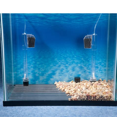 review top   filter  turtle tank  aquarist guide