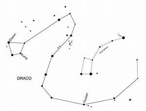 Summer Stars - Draco