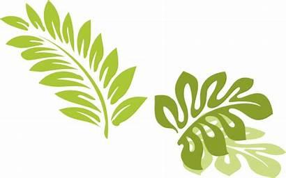 Hawaiian Leaves Clip Leaf Clipart Luau Hawaii