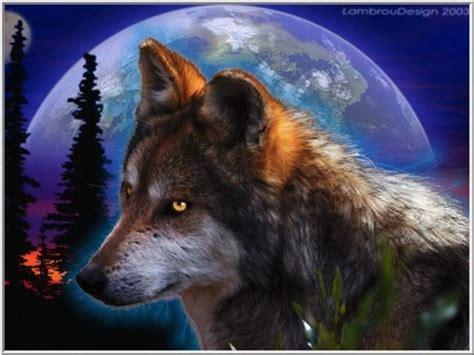 Kress und seine beiden assistenten gratulieren ihm zur beförderung. Der alte Wolf wird langsam Grau.wmv - YouTube