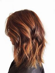 Medium Brown Hair with Auburn Highlights