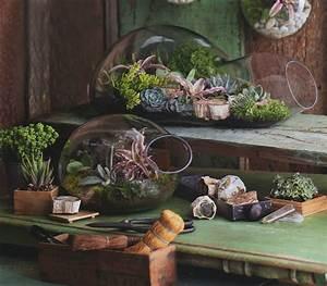 Decor BUBBLE Glass Modern Terrarium Indoor Garden Planter