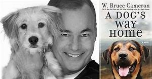 Author W Bruce Cameron Talks To Bark About His New Book