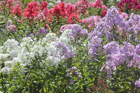 Garten Einfach Selber Gestalten by Garten Einfach Selber Gestalten