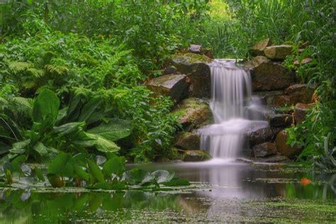 Wasserfall Im Botanischen Garten Bochum Foto & Bild