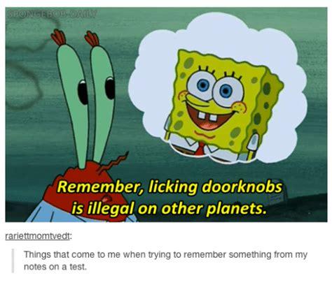 Spongebob Licking Meme - spongebob remember licking doorknobs is illegal on other planets rariettmomtvedt things that