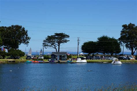 Monterey Swan Boats by Dennis The Menace Park 6