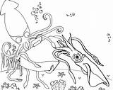 Squid Coloring Underwater Pages Realistic Cartoon Undersea Themed sketch template