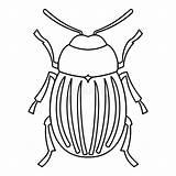 Beetle Icon Outline Colorado Potato Symbol sketch template