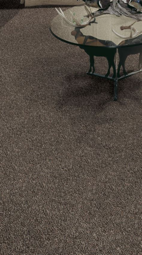 Floating Floor Underlayment Menards by 1000 Images About Flooring Gallery On Frieze
