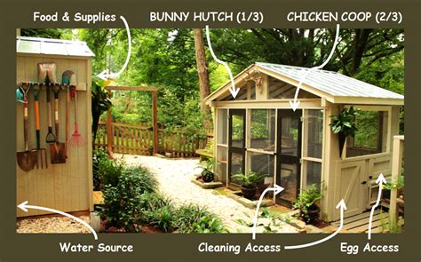 chicken coop design considerations redeem  ground
