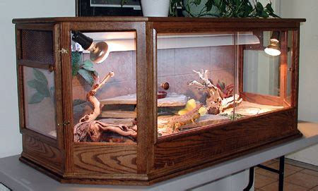 Bearded dragon is definitely a great choice if you are looking for a reptile to be your pet. Saw A Really Neat Coffee Table Enclosure It Looked Something Like   Ideas for my bearded dragon ...