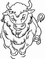 Buffalo Coloring Bison Pages Head Water Drawing American Animals Getcoloringpages Getdrawings sketch template