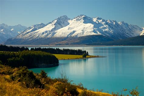 New Zealand Destination Guide