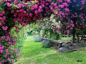 Jardin De Reve : jardin fleuri jardin extraordinare garden ~ Melissatoandfro.com Idées de Décoration