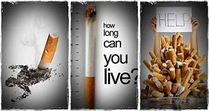 U201cthe Effects Of Smoking  U201d A New Article On