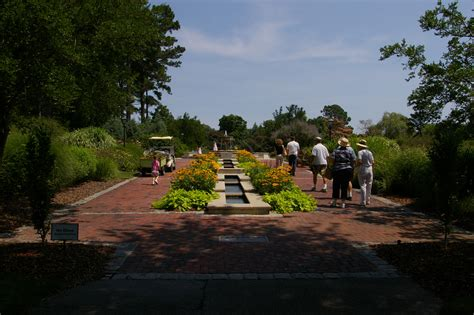 botanical gardens va file norfolkbotanicalgardenperennial jpg